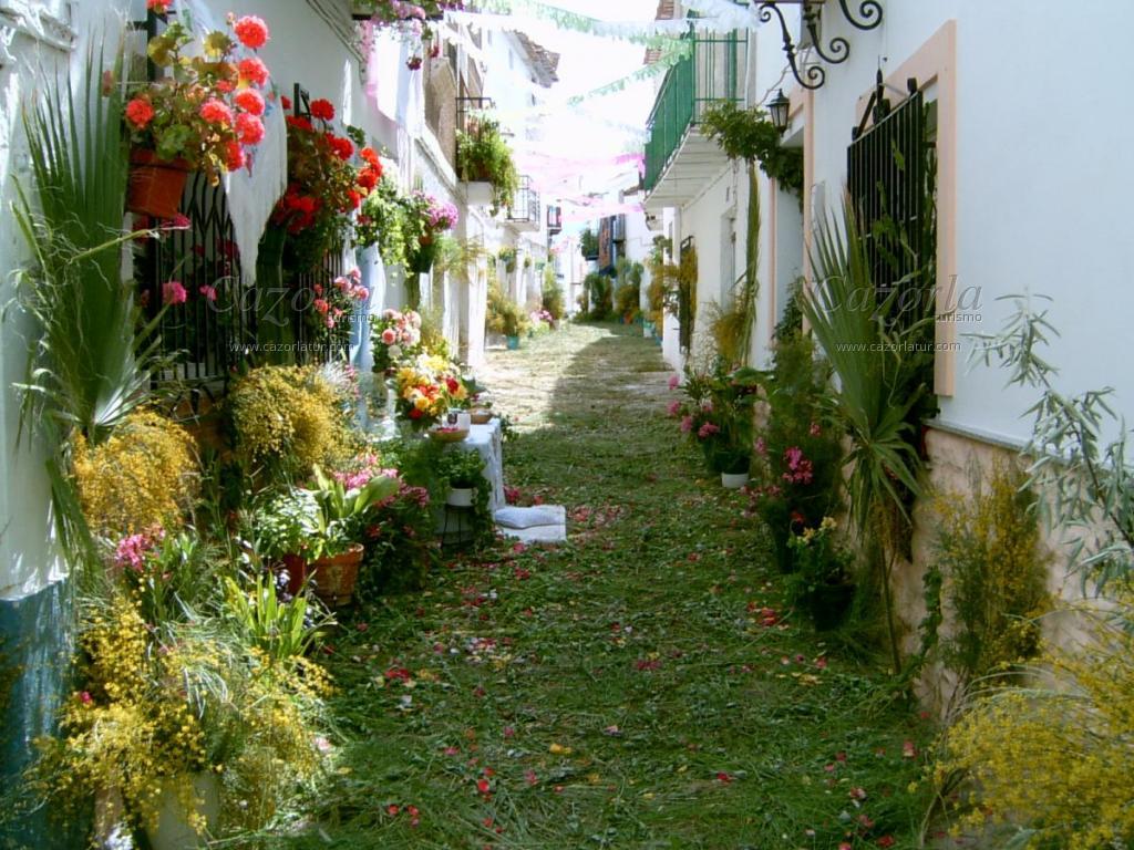 Feria De Hinojares, Programa De Fiestas.