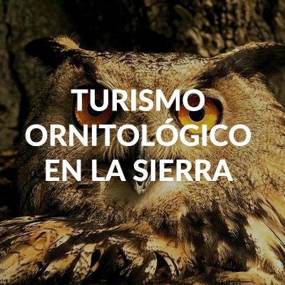 TURISMO ORNITOLIGICO CASAS RURALES EN CAZORLA