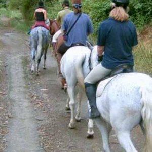 Ruta En Cazorla Caballo