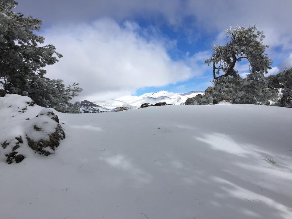 Rutas Con Nieve En Cazorla, Apartamentos Rurales La Suerte
